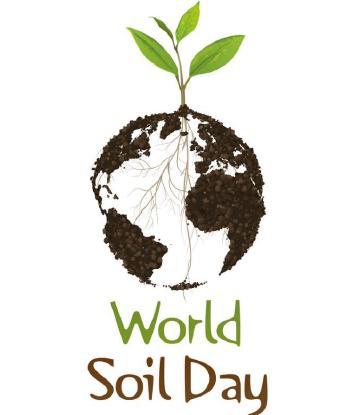 5 grudnia Światowym Dniem Gleby